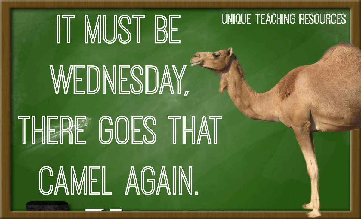 20+ Sayings and Quotes about Wednesday